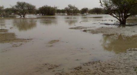"""مدير معهد تغيرات المناخ: الإسكندرية تتعرض لـ""""نوة المكنسة"""" الأسبوع المقبل"""