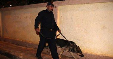 """""""مفرقعات القاهرة"""": مسح شامل للجان الانتخابية قبل بدء عمليات التصويت"""