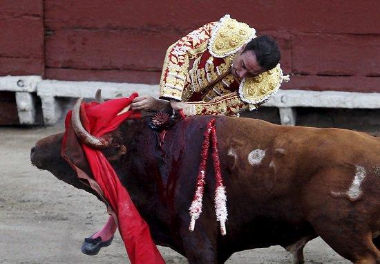 بالصور.. عروض مسابقة الثيران بإسبانيا.. التراث بحكم مزاج الشعب الإسبانى