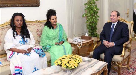 السيسي لـ«وفد الدبلوماسية» الإثيوبي: حريصون على التواصل مع أديس أبابا