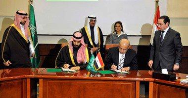 النص الكامل لبيان ختام المجلس التنسيقى الثانى بين مصر والسعودية