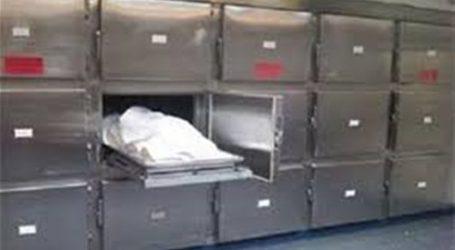 مصرع وإصابة 15 في حادث سير بطريق «الإسماعيلية – السويس»