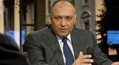 سامح شكري: أقدر جهود أعضاء الخارجية في الإشراف على الانتخابات بالخارج