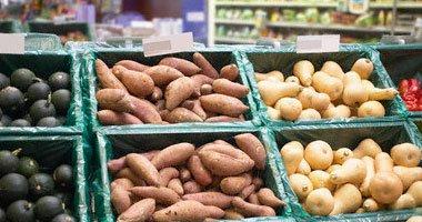 مصر تبلغ روسيا برغبتها زيادة الصادرات الزراعية عقب الحظر على تركيا