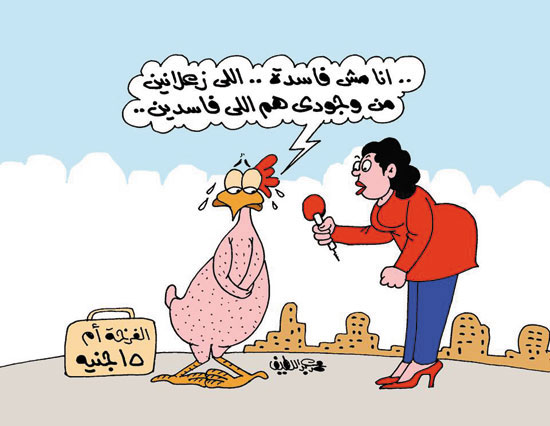 التموين توفر الدواجن منخفضة السعر .. في كاريكاتير الحدث الان