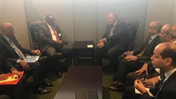 شكري يبحث القضايا الإقليمية والثنائية مع نظيره السوداني