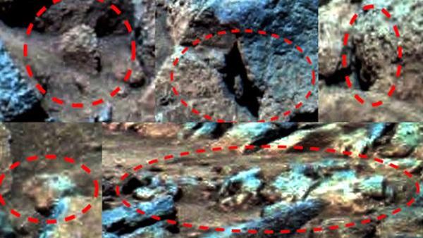 باحث يزعم: اكتشاف غريب على المريخ.. وهبوط جسم طائر