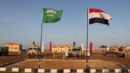 استمرار فعاليات التدريب المصري- السعودى المشترك «تبوك 4»