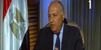 الدكتور سامح شكرى وزير الخارجية
