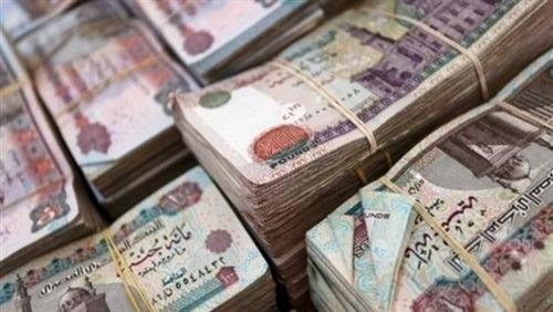 الأموال العامة تضبط 12 قضية اختلاس وكسب غير مشروع بـ63 مليون جنيه