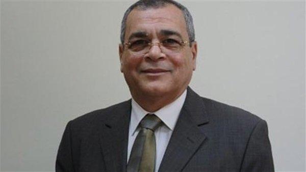 خبير بترول: مصر أصبحت مركزا إقليميا للطاقة لهذه الأسباب
