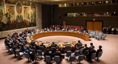 هيئة الأمم المتحدة تشيد بخطة مصر لتنفيذ قرار مجلس الأمن رقم 1325