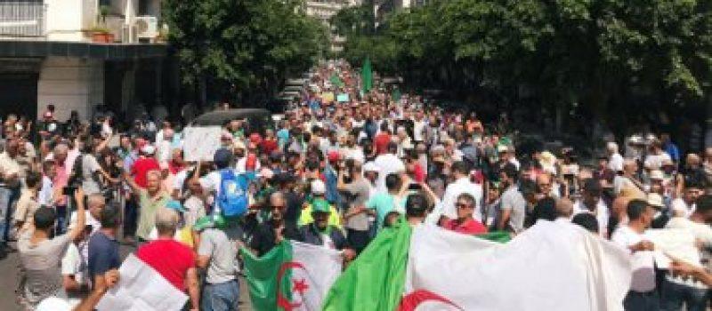 284 ألف ناخب جزائري يسجلون أنفسهم استعدادا للانتخابات الرئاسية
