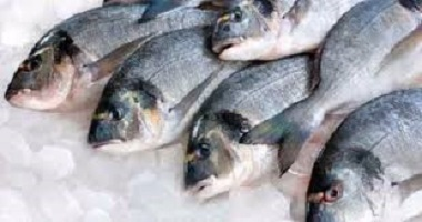 الصحة:نسعي لرصد مصادر تلوث أسماك النيل والبحيرات أول بأول