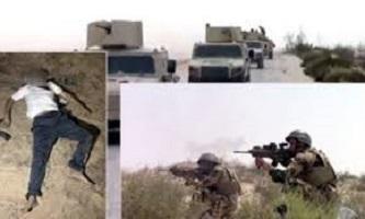بيان القوات المسلحة:القضاء على 83 تكفيريا فى عمليات بشمال سيناء