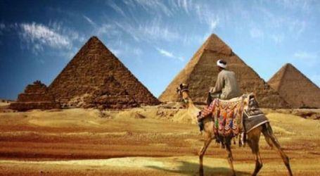 الحكومة تحفز منظمى الرحلات لتشجيع السياحة الداخلية