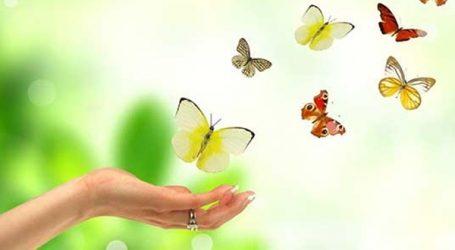 الأزهر في رسالة جديدة: التفاؤل سنة نبوية ويجب إحسان الظن بالله