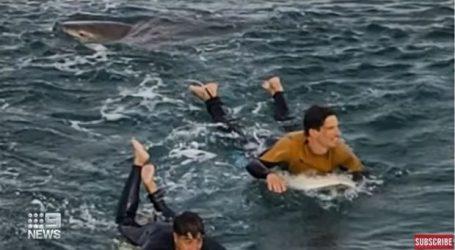 راكب أمواج فرنسي ينجو من سمكة قرش بعد أن أمسكت بقدمه… (فيديو)