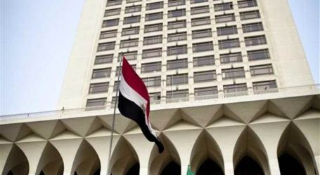 مصر تدين حادث الطعن الذي وقع في بلدة ريدينج البريطانية