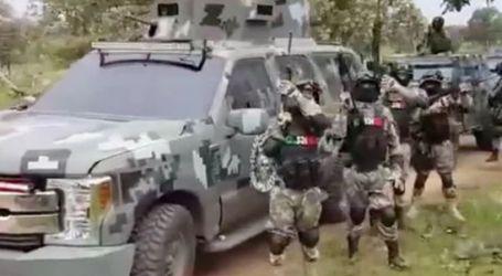 شاهد مافيا مسلحة تتحدى الشرطة في المكسيك