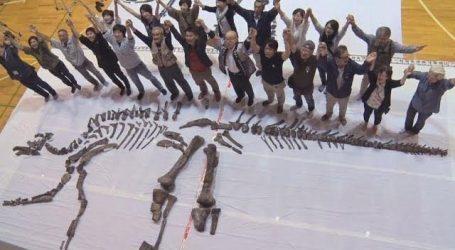أول عمود فقرى كامل لديناصور يكشف للعلماء أسرارا جديدة حول العصور الماضية