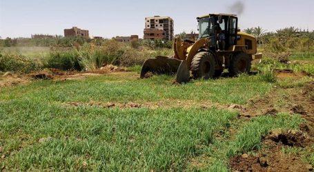 التعدى على الأراضى الزراعية يهدد الاقتصاد المصرى
