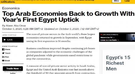 مقال مترجم .. وكالة (بلومبرج) الأمريكية : عودة أكبر الاقتصادات العربية إلى النمو مع أول صعود لمصر خلال (14) شهر