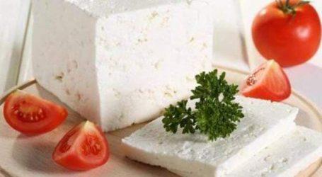 طريقة عمل الجبن الثلاجة فى المنزل