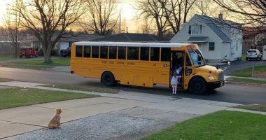 كلب يصطحب الأطفال ويطمئن لركوبهم الحافلة الدراسية بأمريكا.. فيديو