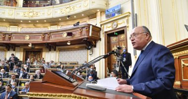 نواب البرلمان تسأل وزير الخارجية..هل هناك توجه للجوء للقضاء الدولى بشأن ملف المياه؟