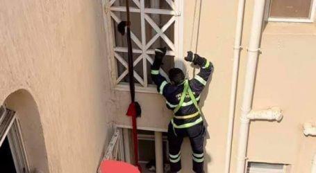 الحماية المدنية تنقذ قطة عالقة فى منور عقار لمدة أسبوع بالقاهرة الجديدة