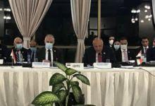 شكرى ووزير الرى فى اجتماعات الكونغو حول سد النهضة