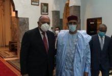 وزير الخارجية سامح شكرى ورئيس جمهورية النيجر