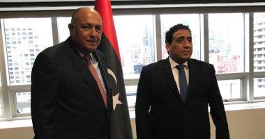 وزير الخارجية سامح شكرى يلتقى الدكتور محمد المنفى